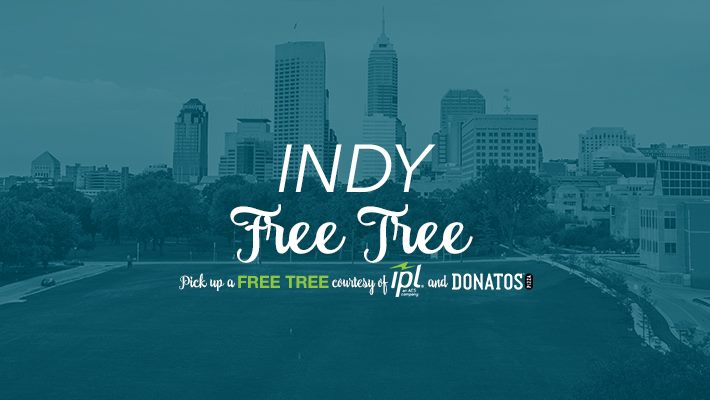 Indy Free Tree Event