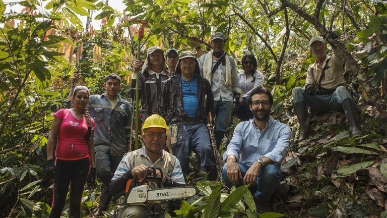 impact - people in jungle with chainsaw colombia