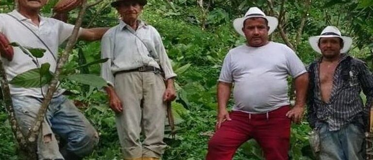 men standing in the jungle
