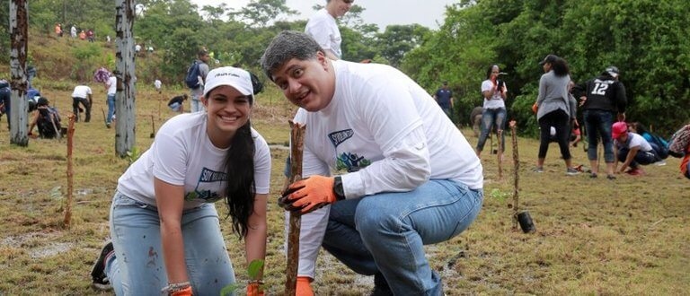 Reforestation in Panama